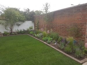 Regent Villa garden, Leamington Spa - Before
